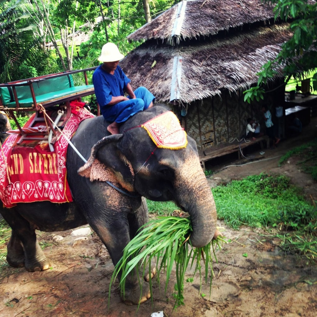 Phuket – Dreaming of island life