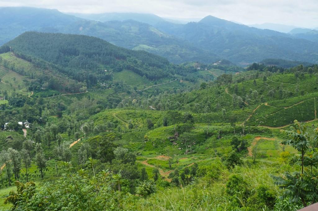 madulkeleknuckels-mountain-range