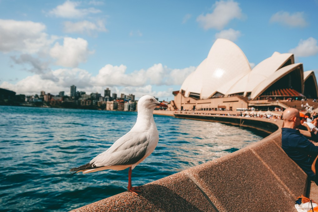 How to do Sydney on a Budget